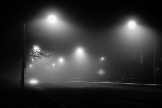 fog 02 maxwell danger photography