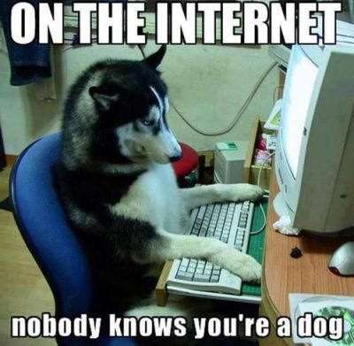 on the internet no one knows you're a dog