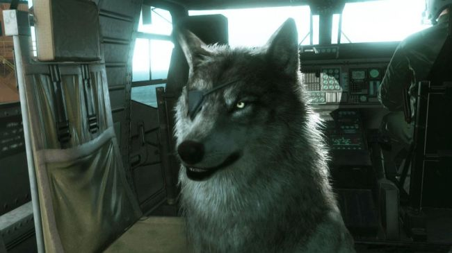 metal gear solid v the phantom pain d dog