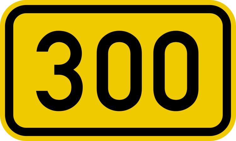 Bundesstraße_300_number cover
