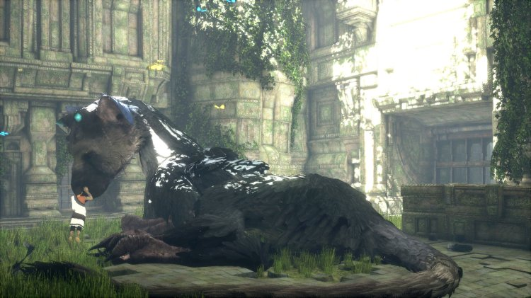 the last guardian 02